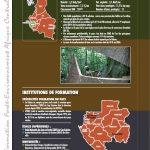 Cartographie des formations au Gabon