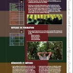 Cartographie de formation en Republique Centrafricaine