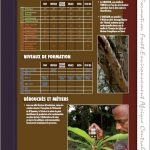 Cartographie des Formations au Tchad